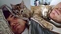Jovem adota gata e desde então é acordado com muitos abraços, lambidas e carinho.