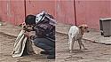 Mulher flagra homem agasalhando cachorro de rua em dia frio em Goiás.