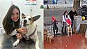 Cadela que teve roupinha roubada é presenteada com nova por médica veterinária.