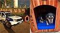 Detentos fabricam casinha para cachorro adotado por Guarda Municipal de Viana.