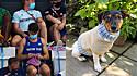 Medalhista Olímpico é flagrado tricotando na arquibancada roupinha para cachorro.