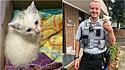 Policial da cidade de Emerald Isle, na Carolina do Norte, nos Estados Unidos, resgata gato perdido em ponte movimentada.