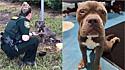 Cachorro preso em poste sob temperatura de 40ºC é resgatado na Flórida, Estados Unidos.