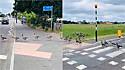 Gansos são flagrados atravessando a rua em fileira e na faixa de segurança.