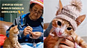 Com amor, vovó tricota chapéu para o gatinho da neta.