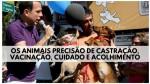 São Paulo se tornará Exemplo na Proteção e Defesa Animal (Veja o Vídeo)