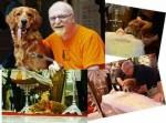 Amigos de Verdade – Cosmo, cachorro de Kid Vinil, se despede do dono e emociona em velório!