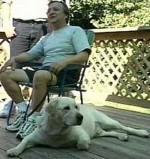 Cachorro ajuda seu dono cego a descer do 71º andar das Torres Gêmeas no atentado de 11 de setembro