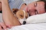 Dormir com seu pet faz bem para sua saúde, estudos comprovam!