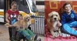 Conheça a história do menino Henrique e seu cãozinho Pipo (O vídeo que emocionou milhares de pessoas)
