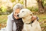 A vida começa quando encontramos o amor - Carta de uma cão ao seu humano