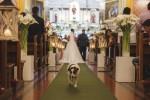 Mais católico que muita gente! Cachorro vai à missa, procissão e casamentos em MG