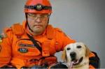 Corpo de Bombeiros se despede do labrador Frank o Cão Herói