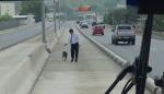 Motorista do RJ para viagem para salvar cachorro e recebe aplausos de seus passageiros (VEJA O VÍDEO)