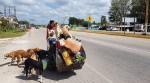 Mexicano viaja com bike especial para salvar cães de rua