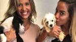 Anitta e Luisa Mell flagram abandono e resgatam cachorros em estrada