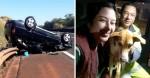 Após uma semana de buscas, mulher reencontra cão que perdeu após capotar carro em SP