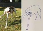 'Obras-primas': Mulher tenta desenhar seu cachorro e acaba se tornando viral nas redes sociais