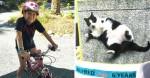 Garotinha de 10 anos encontra gato desaparecido e se torna a 'detetive do bairro'