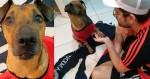 Torcedor do Flamengo rifa ingresso para salvar cachorrinho e tem surpresa mais que especial