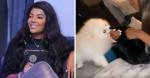 Cachorro de estimação de Ludmilla 'rouba' peruca da cantora: 'Pura cãofusão'