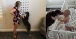 Proteção canina: bebê dorme sob supervisão de seu cão e quando chora recebe beijinhos (veja o vídeo)