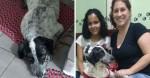 Cãozinho que sofria com agressões nas ruas finalmente ganha um lar amoroso