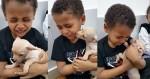 Menino encontra cachorrinha Chihuahua e começa a chorar: 'Ela é linda demais' (veja o vídeo)