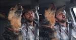 Em vídeo viral, cachorra dá show cantando sua música preferida country
