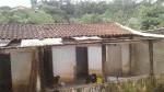 Abrigo de cães é destruído por forte chuva em Carapicuíba (SP); ONG pede doações