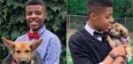 Adolescente dedicado cria gravatas para pets de mais de 20 abrigos para incentivar adoção