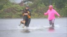 Repórter para transmissão e se arrisca para ajudar mulher a salvar cachorro em forte tempestade (VEJA O VÍDEO)