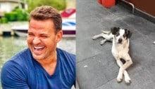"""Cantor Eduardo Costa debocha da comoção sobre o """"cão do Carrefour"""""""