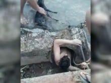 Adolescente arrisca sua vida ao salvar pinsher de bueiro (VEJA O VÍDEO)
