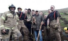 Bombeiros salvam cão em buraco de coelho com extrema dificuldade