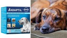 """Anúncio de difusor que """"acalma cães ansiosos"""" é proibido por ineficiência"""