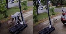 Câmera captura cão tentando desesperadamente seguir mulher que abandonou (veja o vídeo)