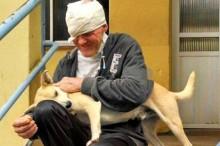 Cão espera ansiosamente por dono morador de rua em porta de hospital no RS (veja o vídeo)