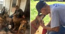 Último desejo de idoso doente era encontrar lares para seus 27 cães