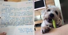 Jovem presenteia cachorro de vizinha com brinquedos para ajudá-lo a não se sentir sozinho