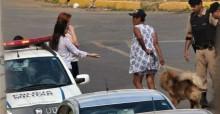 Moradora de rua tenta vender cachorro perdido e voluntárias acionam a PM em MG