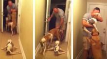 Em vídeo, cachorrinha deficiente se arrasta para receber pai que esteve ausente por 6 meses