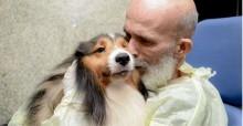 Paciente do Recife com câncer melhora após visita do seu cachorro (veja o vídeo)