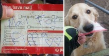 Carteiro escreve cartas para cachorrinha apenas para vê-la feliz
