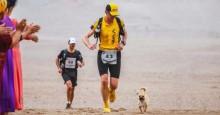Cadelinha segue atleta durante mais de 100 quilômetros e ganha o amor que procurava
