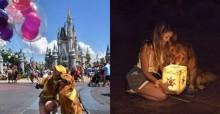 Cão de serviço visita Disney com sua dona e faz ensaio de fotos super fofo