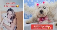 Dona faz linda homenagem para cachorrinha falecida que a acompanhou por 19 anos