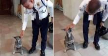 Segurança de shopping vai contra regras do estabelecimento e cuida de cães de rua: pura bondade
