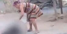 Cão é morto pela própria dona por comer galinhas de sua propriedade em Pernambuco