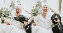 Doguinho rouba a cena e o buquê de noiva e viraliza nas redes sociais